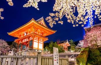 3rd ICRS Summit Kyoto 2016