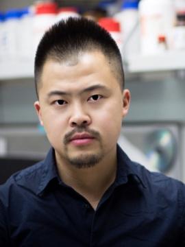 Yu Yin