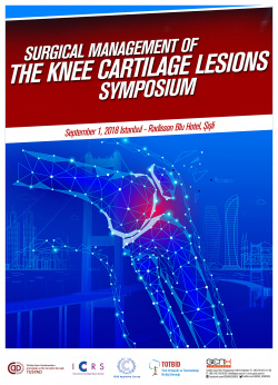 Surgical Management of Knee Cartilage Lesions